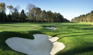 wentworth blog